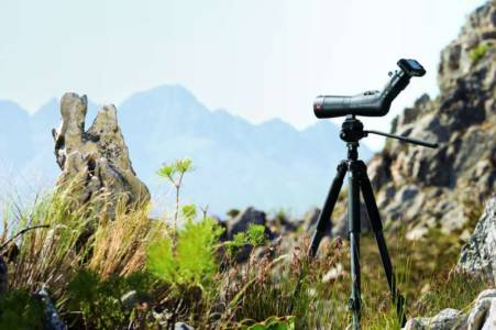 Digiscoping 300
