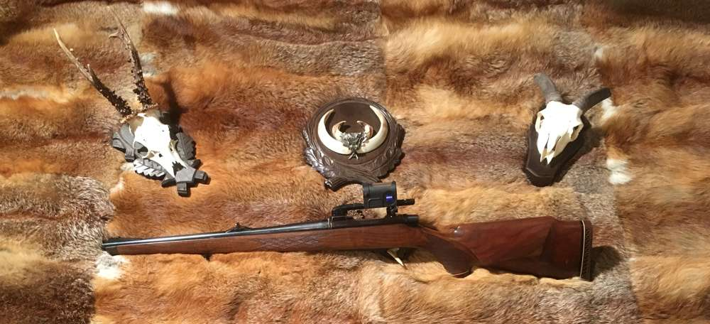 Remington Mohawk 600